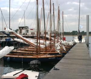De DM huren in Ophoven/Kinrooi, Limburg