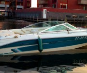 Speedboot Sea Ray 200 Signature