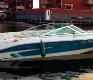 Speedboot Sea Ray 200 Signature huren in Biddinghuizen, Flevoland