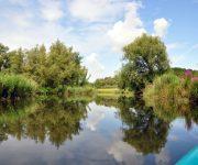 Een bootje huren in de Biesbosch, waar kan je terecht?
